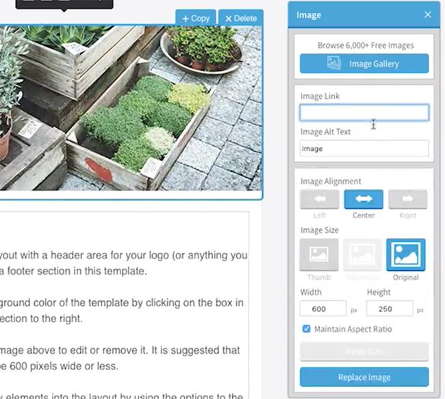 editer-image-newsletter